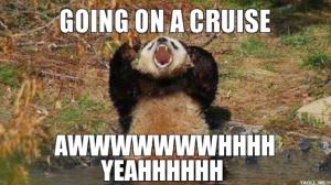 bear cruise